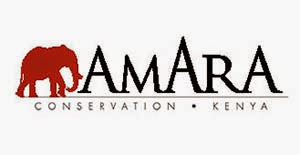 What Amara is About