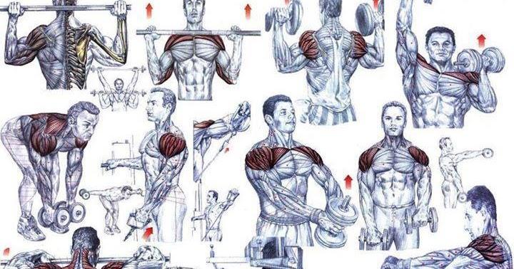 Ist unfair. Hardcore shoulder workouts