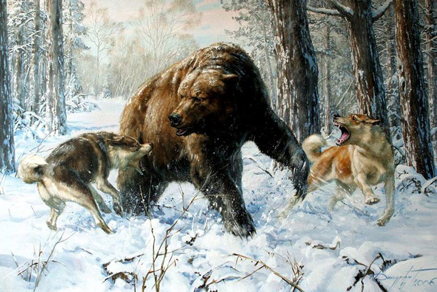 рисунки медведя в берлоге