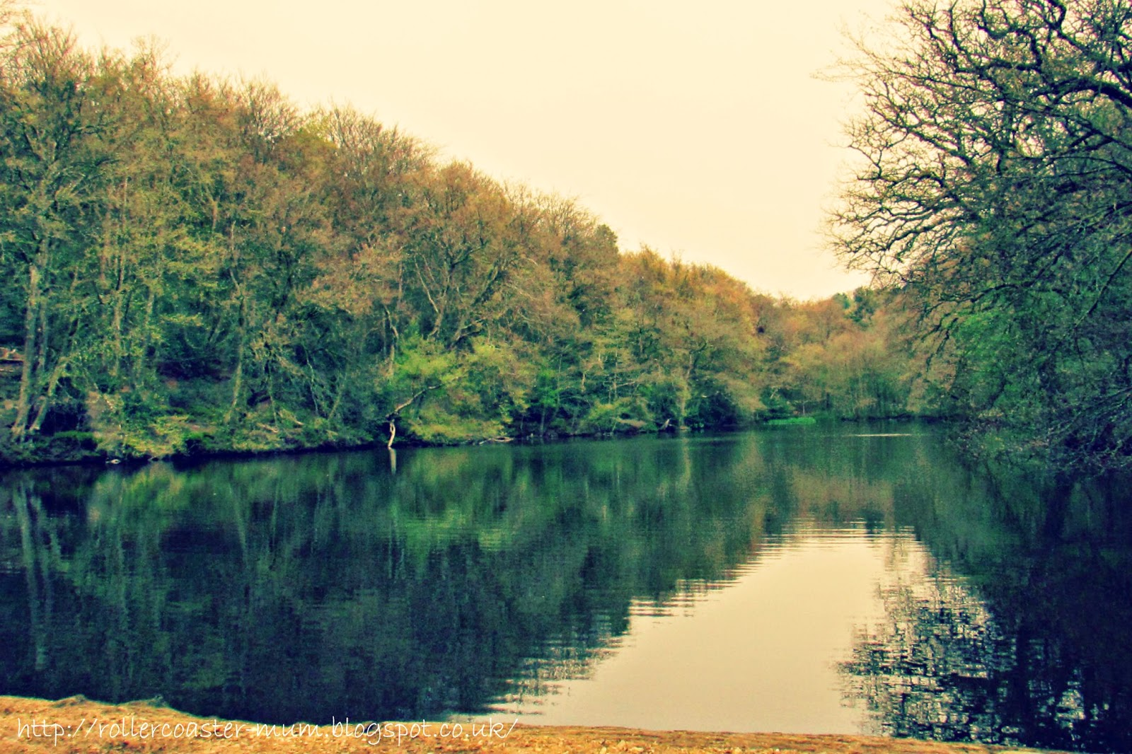 The beautiful and mysterious middle lake at National Trust Waggoners Wells