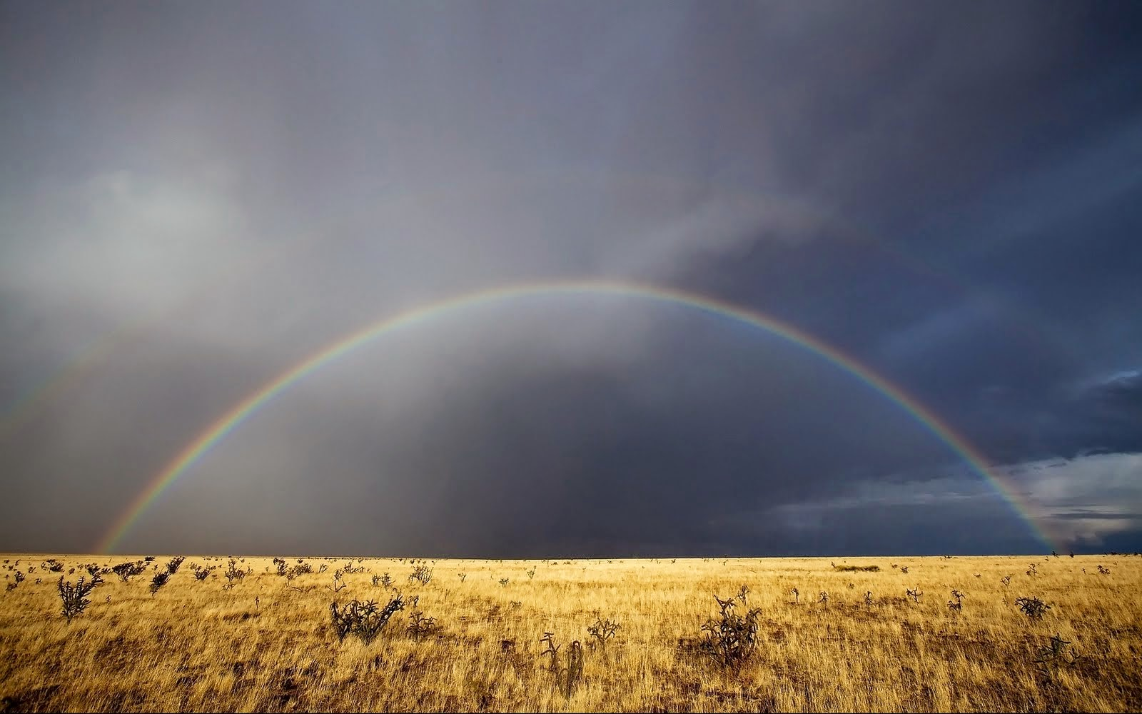 nature rainbows wallpapers