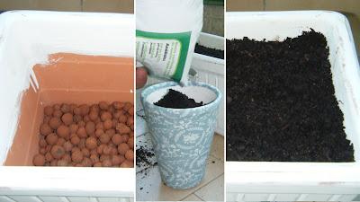 Preparar base de cultivo da horta