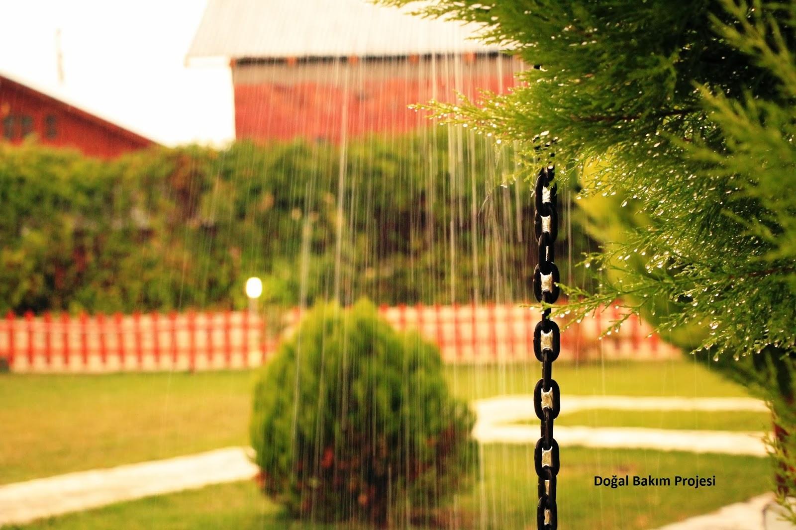 http://sagliklidogalkozmetik.blogspot.com.tr/2014/02/dort-temel-hint-kural-ile-depresyonla.html