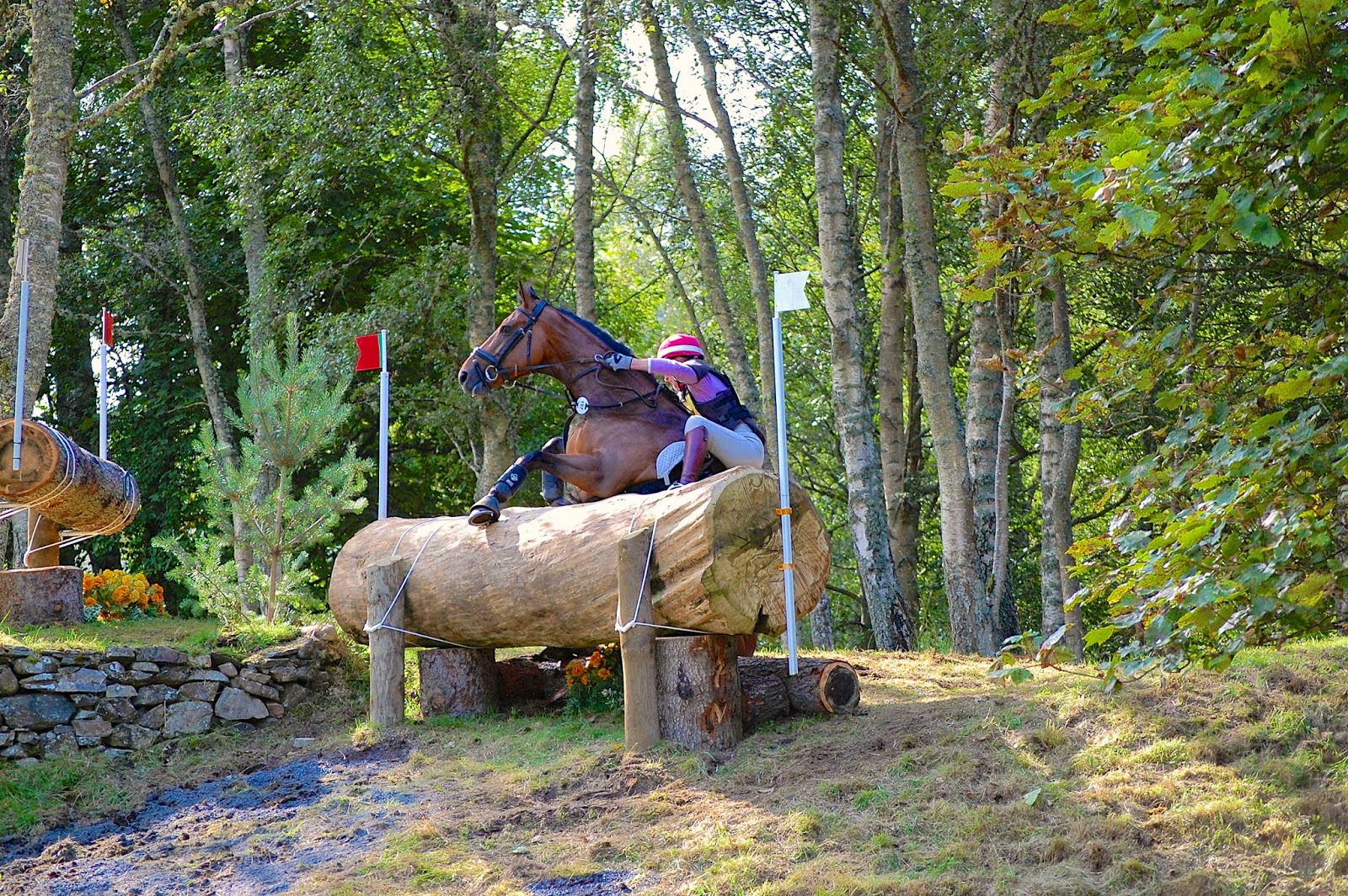 Blair Castle International Horse Trials; horse crash 6