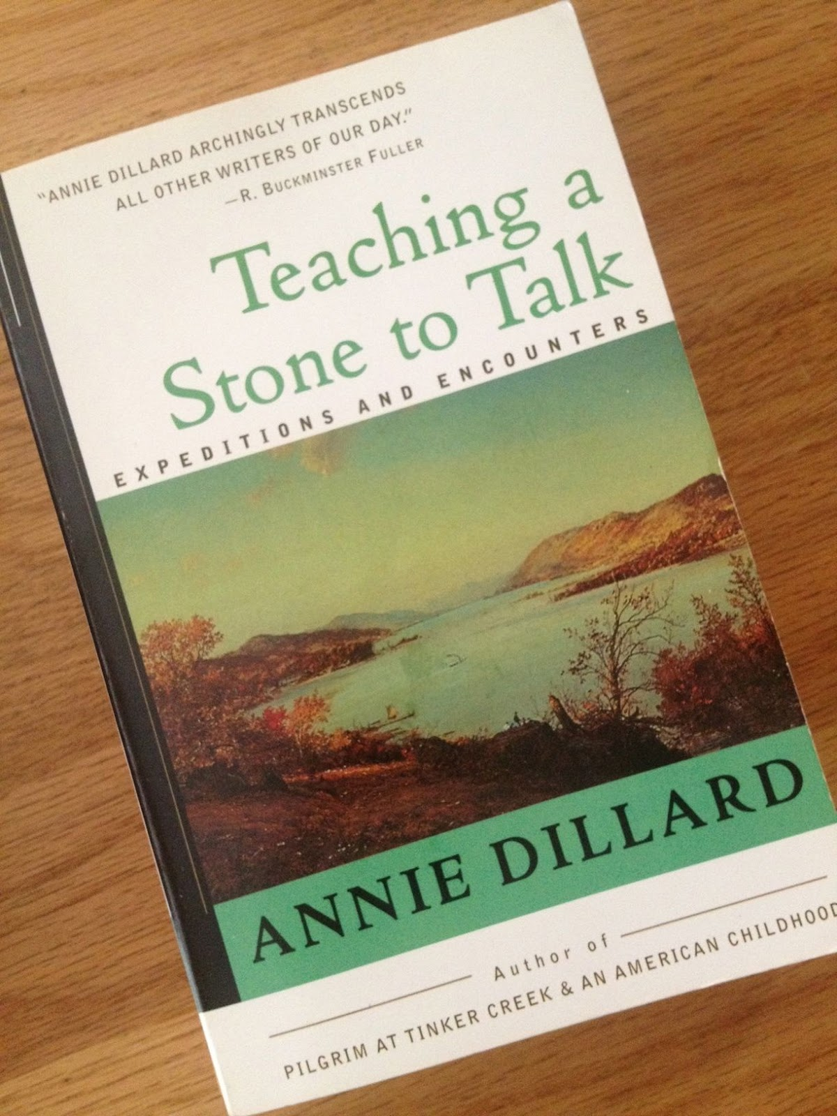 annie dillard essays teaching a stone to talk Teaching a stone to talk by annie dillard on studybaycom - biographical information about the author could, online marketplace for students.