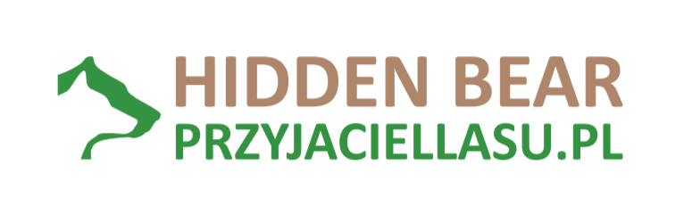 HIDDEN BEAR - PRZYJACIELLASU.PL