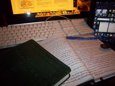 My NaNoTechnologies... Mac, Android Tablet, and good old fashioned pen and paper.