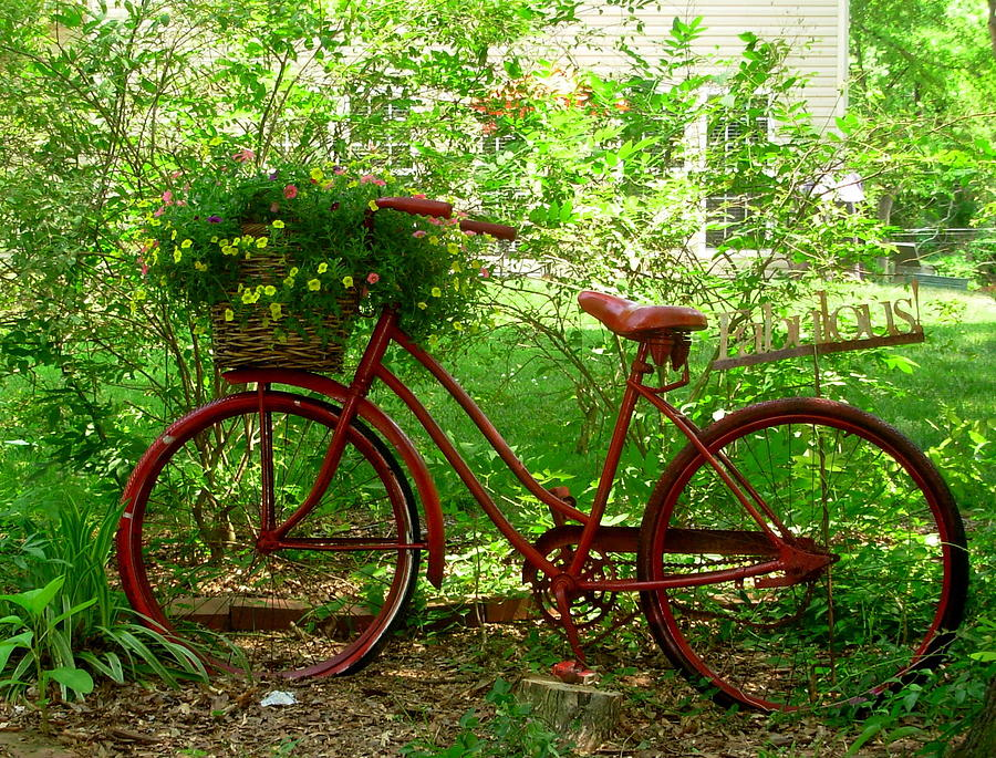 bicycles with flowers wallpaper - photo #17