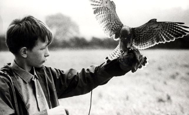 the importance of kes to billy essay We'd never seen anything like kes based on the barry hines novel a kestrel for  a knave it is about skinny billy casper (brilliantly played by.