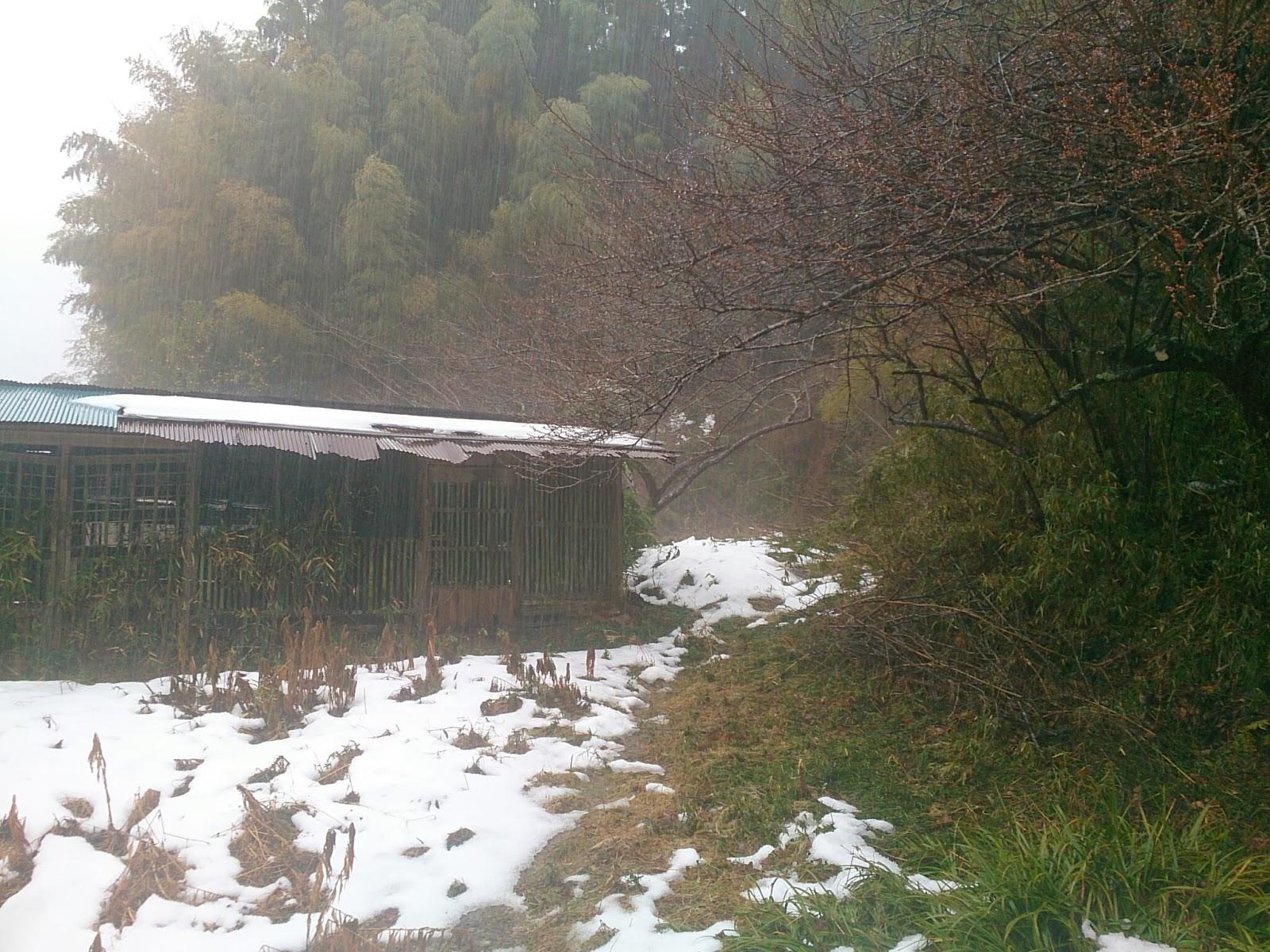 雪のち大雨