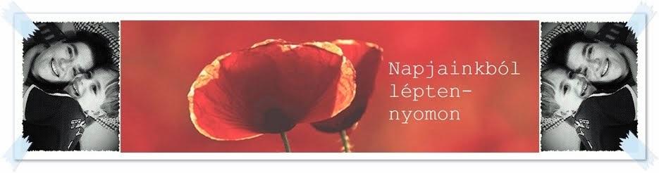 Napjainkból...