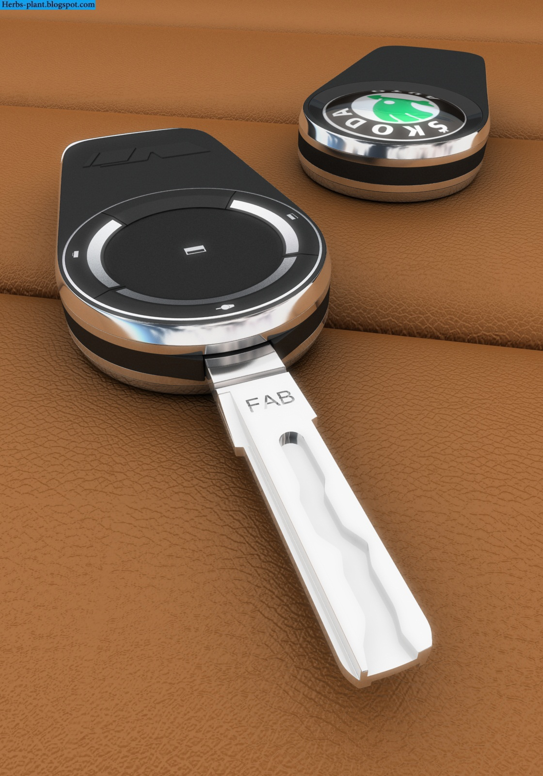 Skoda rapid car 2013 key - صور مفاتيح سيارة سكودا رابيد 2013