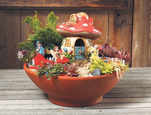 Blooming Desert 39 S Daily Dirt To Fairy Garden Or Not To