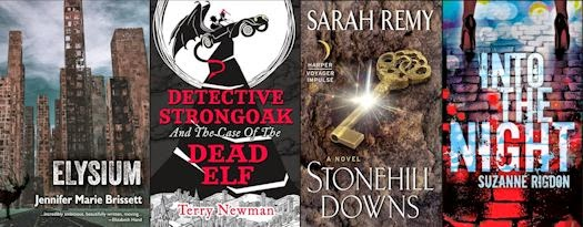 2014 Debut Author Challenge Cover Wars - December 2014 Winner