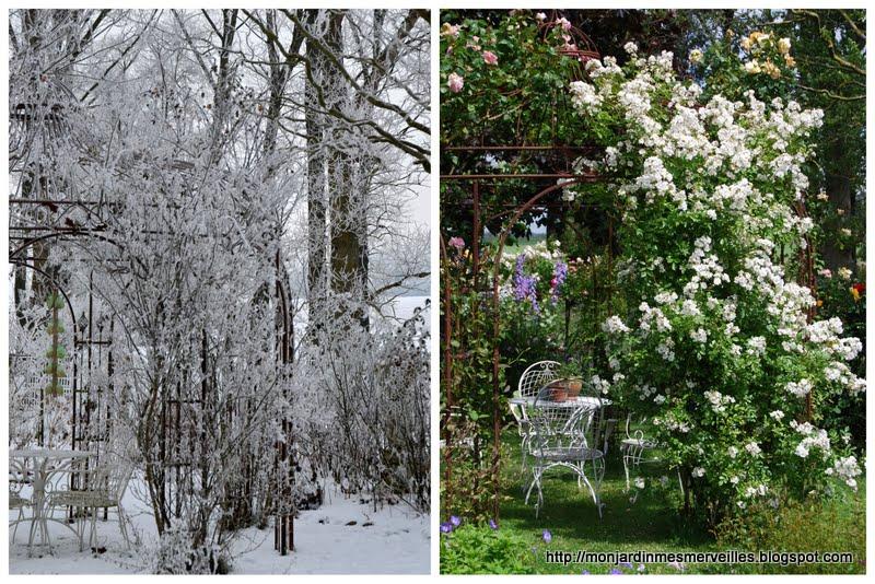 Mon jardin mes merveilles hiver et 2 for Jardin en hiver