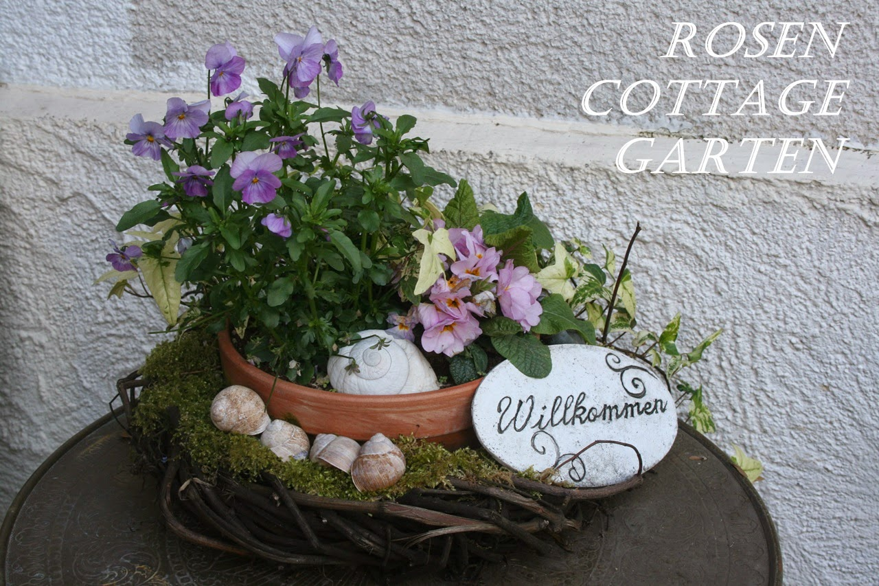 rosen cottage garten 3 jahre rosen cottage garten. Black Bedroom Furniture Sets. Home Design Ideas