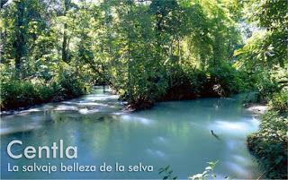 Pantanos de Centla, Tabasco, ANP, mexico, reserva biosfera
