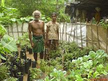 Beautiful Home Garden Sri Lanka