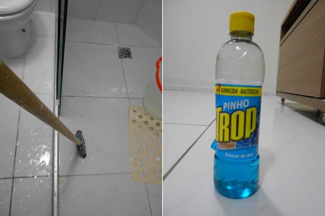 Limpeza Banheiro Hospitalar : Agora sim casada dia de faxina como limpo meu apartamento