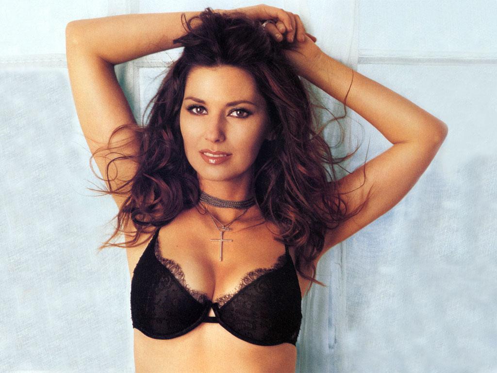 http://2.bp.blogspot.com/-SyVmOxocrb8/TfEGjJKOt1I/AAAAAAAADTI/No2lqo2qDm4/s1600/Shania+Twain+Sexy.jpg