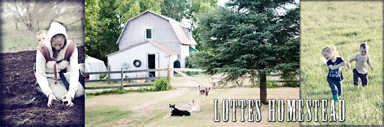 Lottes Homestead