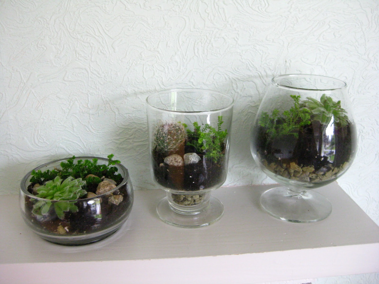 Life Designed DIY Terrariums With Thrift Store Vases