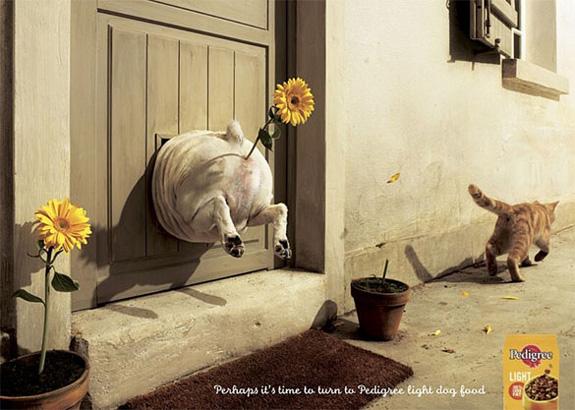hilarious print advertisements