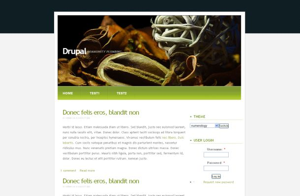 Free Drupal Natural Black Green Theme Template