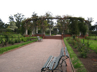Photo of the pedestrian at the rose garden
