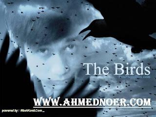 Ahmed Noer