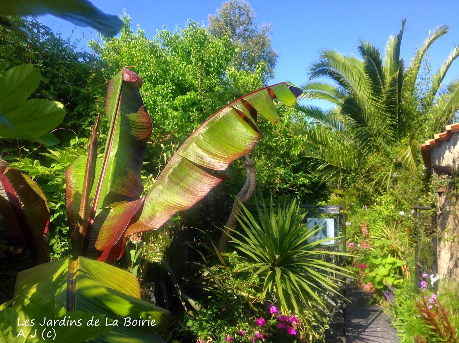 ouvert le week end de la pentec te les jardins botaniques de la boirie. Black Bedroom Furniture Sets. Home Design Ideas
