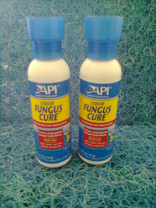 LIQUID FUNGUS CURE