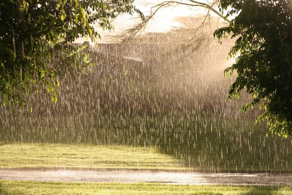 Blogul cu poezele: Ploaie de vară