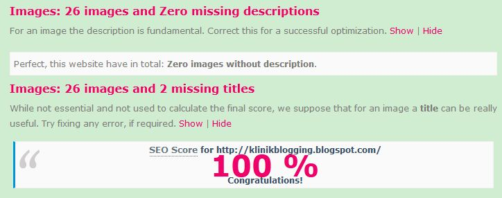 skor seo blog 100