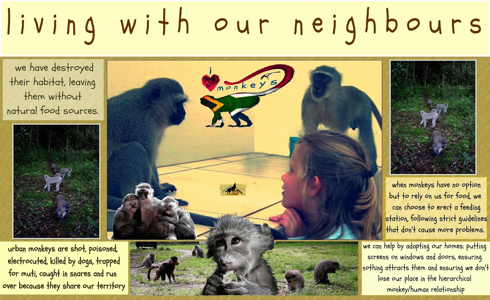 baboons habitat adaptations and impact of They are the olive color baboon and the yellow color baboon baboons are the fight can cause a bigger impact on entire troop habitat: baboons are highly.