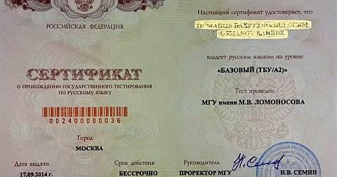 Сдал документы на гражданство узнать результаты понадобилось всего
