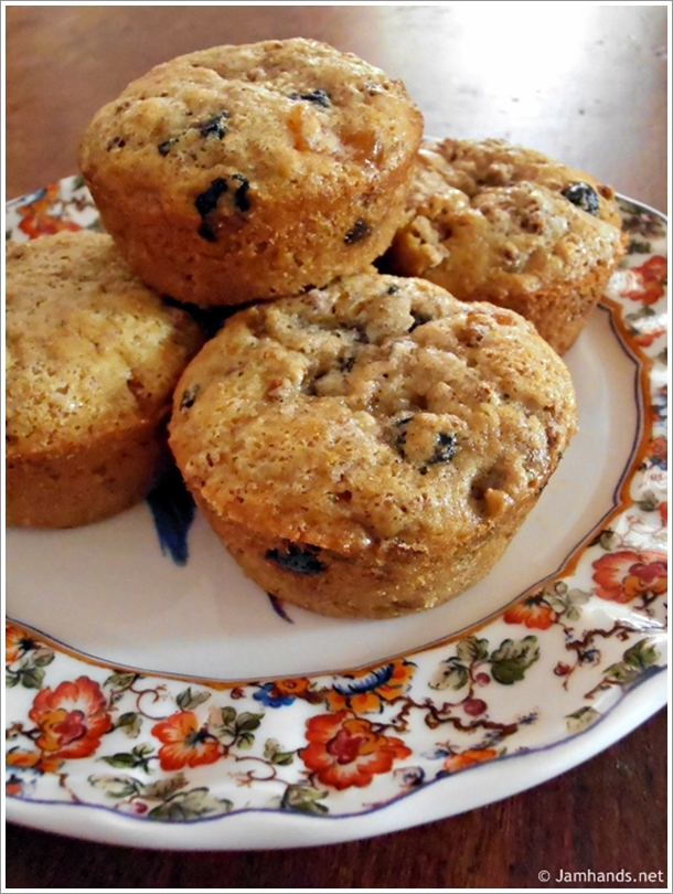 Jam Hands: Moist Apricot-Blueberry-Cherry (ABC) Bran Muffins