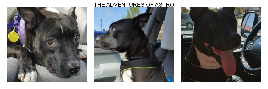 The Adventures Of Astro