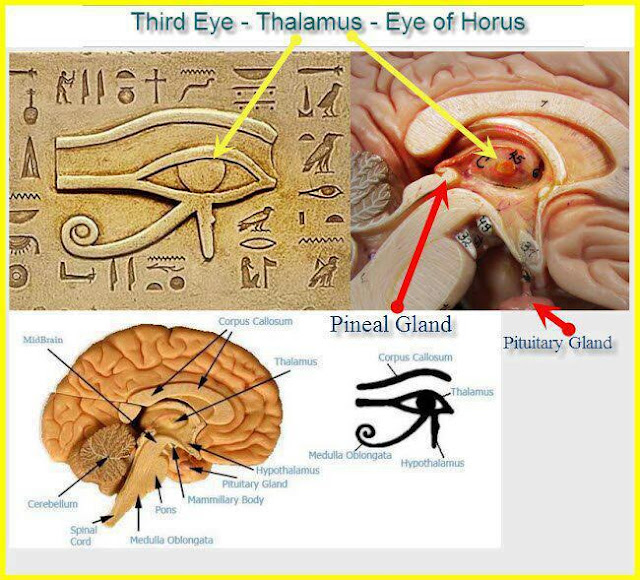 Secrets Of The Third Eye, The Eye Of Horus, beyond The Illuminati 8