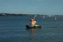 Halifax Harbour Cruises