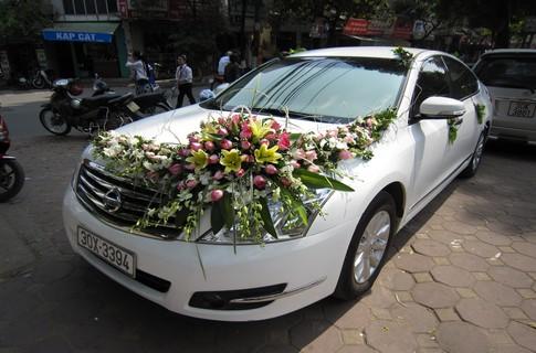 Xe cưới Nissan Teana,Xe cưới,Xe cưới Nissan