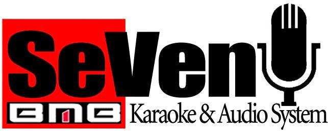 Seven Karaoke Audio System