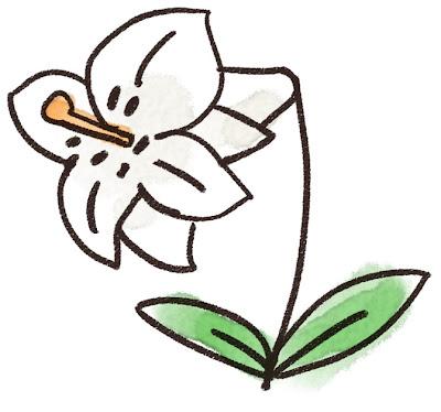 ユリのイラスト(花)