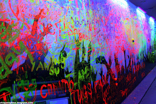 Glow Wall Paint India