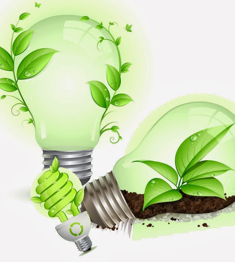 biofuel briquettes used for green energy production