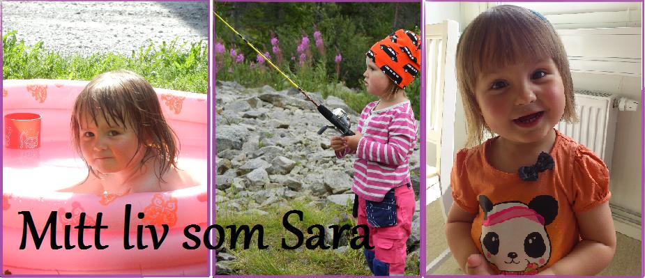 Mitt liv som Sara