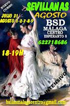 CURSO DE SEVILLANAS EN AGOSTO EN BSD MÁLAGA CENTRO