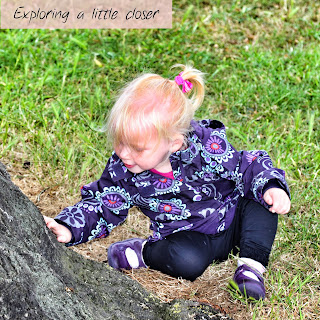 Toddler sitting on grass touching a tree trunk