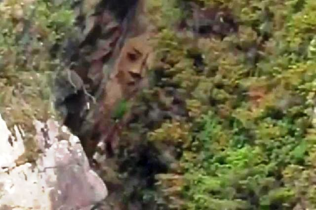 Mystery face found carved in a remote rock on Canadian island Rock%2Bcarving%2Bancient%2Bhistory%2Bmystery