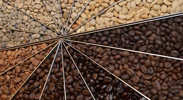 TYPES OF ROASTED COFFEE BEANS BY DEGREE LEVEL